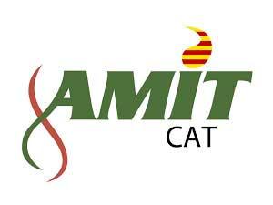 AMIT-CAT