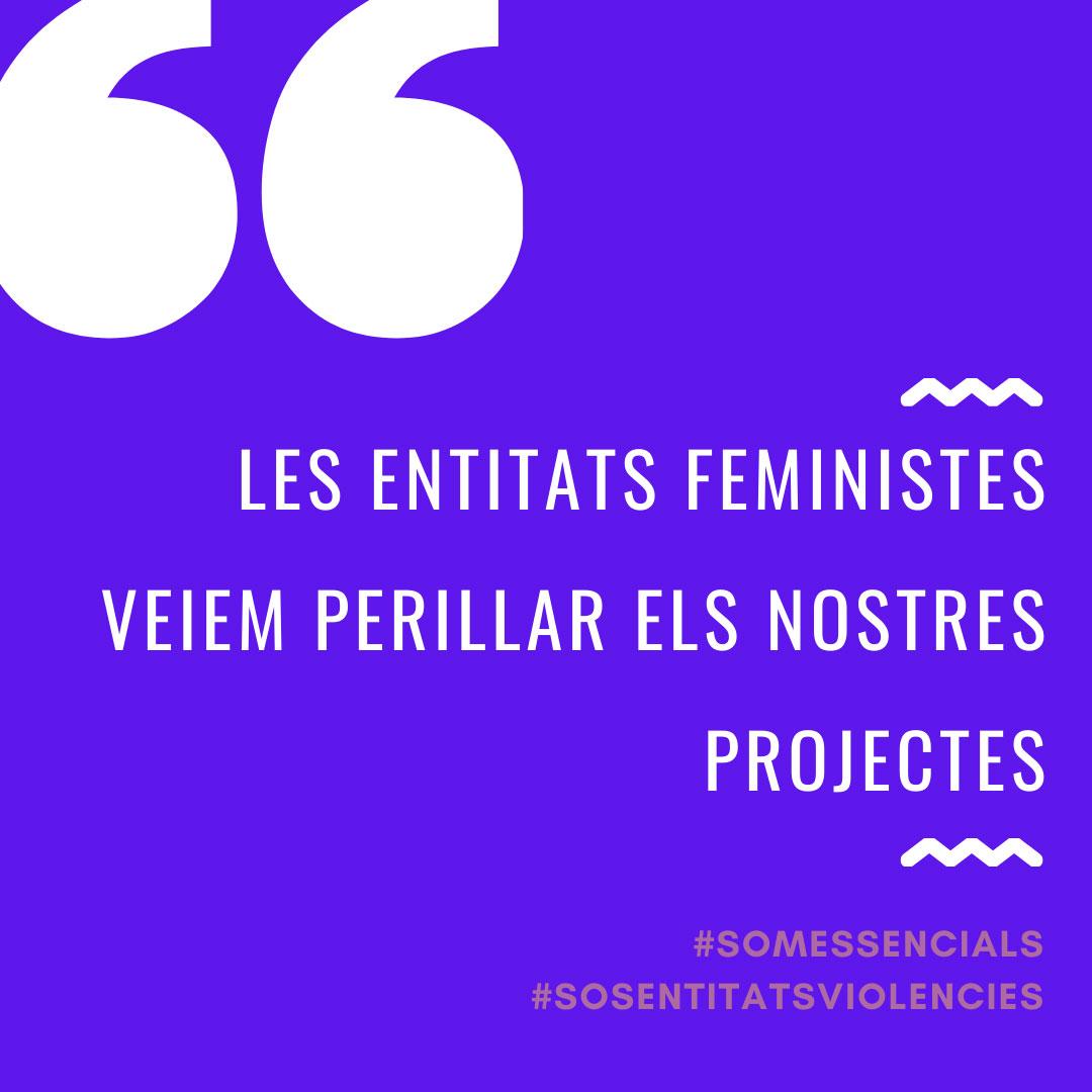 La tasca de les entitats feministes, en risc